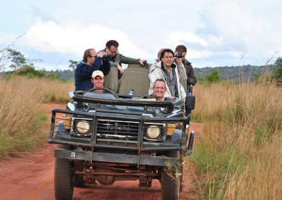 Incentive trip to South Africa: Safari